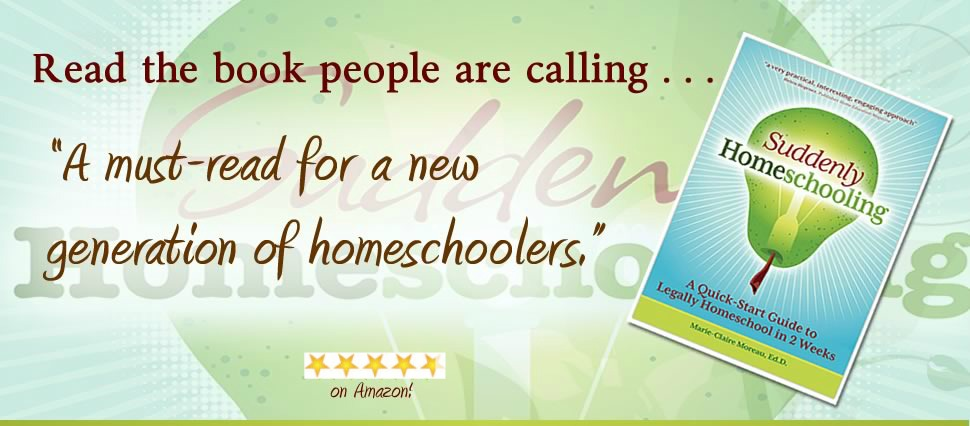 new-stars-bookpage-header-suddenly-homeschooling