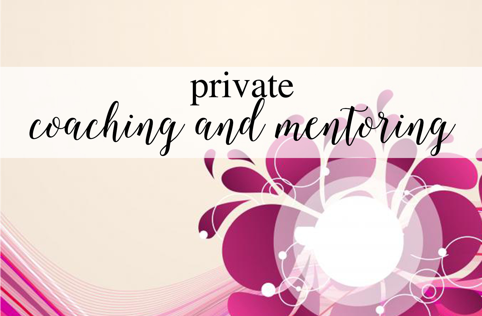 Private Coaching and Mentoring